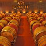 Cavit - Movimento Turismo del Vino Trentino Alto Adige