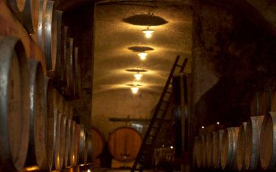 Endrizzi - Movimento Turismo del Vino Trentino Alto Adige